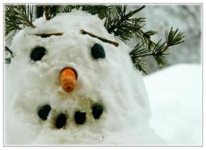 snow-man-250070_1280