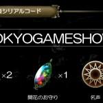 【インサガ】TGS特典シリアルコード と雑記